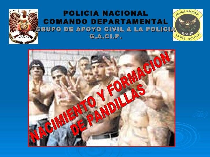 NACIMIENTO Y FORMACION DE PANDILLAS POLICIA NACIONAL COMANDO DEPARTAMENTAL GRUPO DE APOYO CIVIL A LA POLICIA G.A.CI.P.