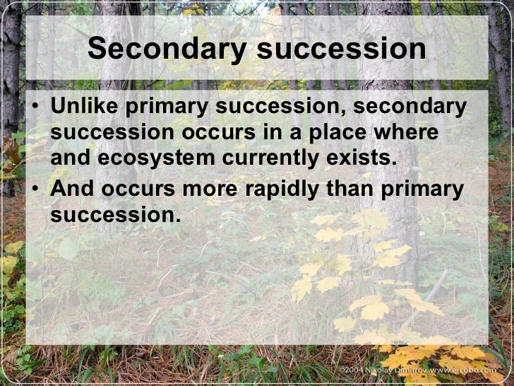 ecosystem is dependent on succession essay Ecological succession is the process of change in the species structure of an  ecological  up the development of an area from non-vegetated surfaces to a  climax community depending on the substratum and climate, different seres are  found.