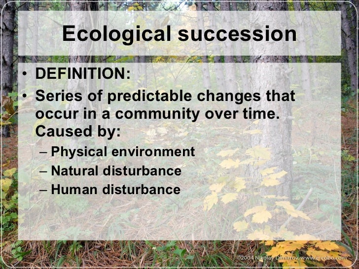 Ecological Successions