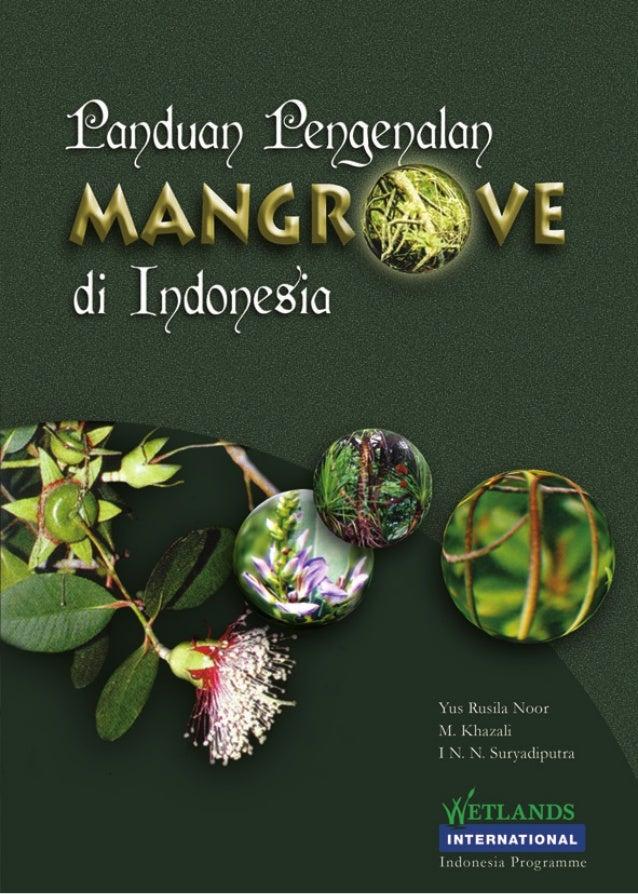 i3 Panduan Pengenalan MANGROVE di Indonesia Oleh: Yus Rusila Noor M. Khazali I N.N. Suryadiputra Bogor, Oktober 2006 Indon...