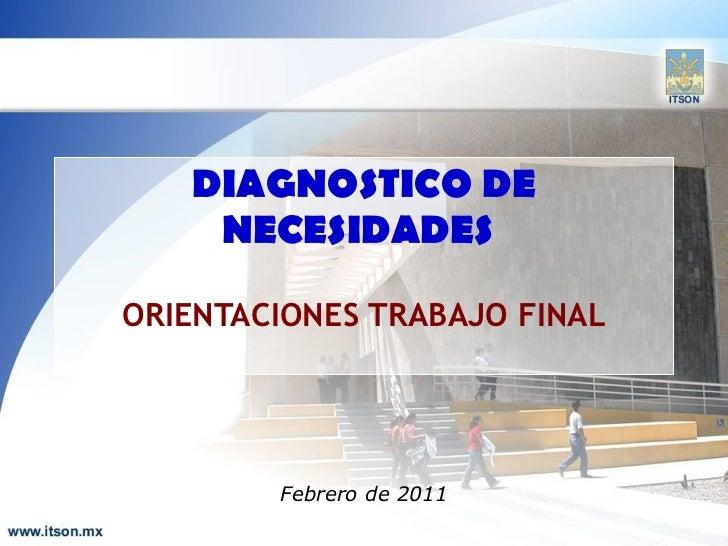 DIAGNOSTICO DE NECESIDADES   ORIENTACIONES TRABAJO FINAL Febrero de 2011