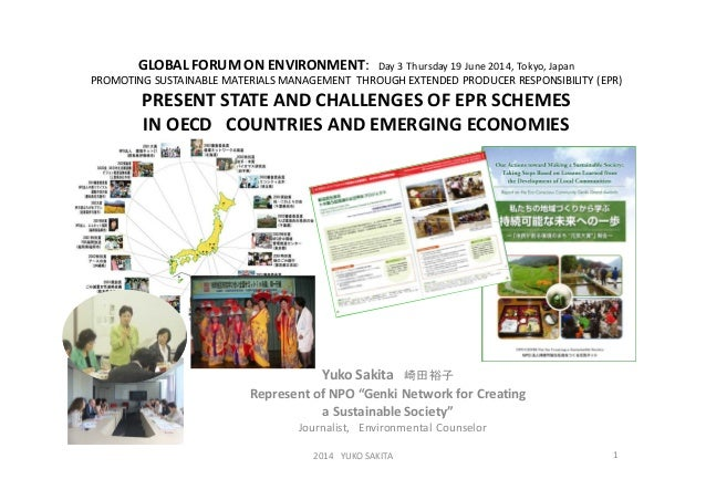 GLOBAL FORUM ON ENVIRONMENT: Day 3 Thursday 19 June 2014, Tokyo, Japan PROMOTING SUSTAINABLE MATERIALS MANAGEMENT THROUGH ...