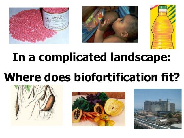 In a complicated landscape: Where does biofortification fit?