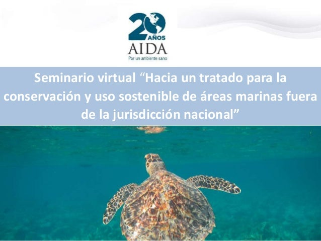 """Seminario virtual """"Hacia un tratado para la conservación y uso sostenible de áreas marinas fuera de la jurisdicción nacion..."""