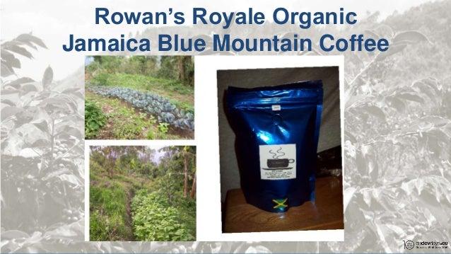 Blue Mountain Coffee Ceo