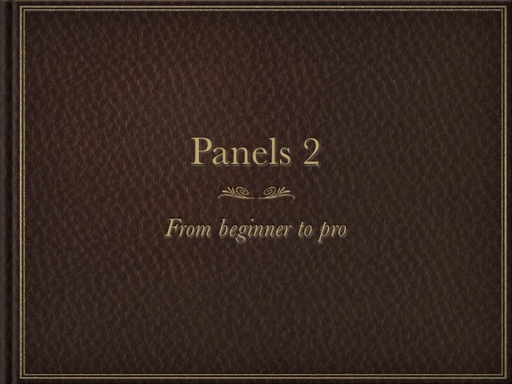 Panels 2 From beginner to pro