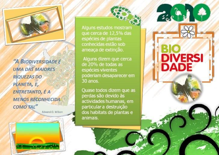 Panfleto Ano Internacional da Biodiversidade