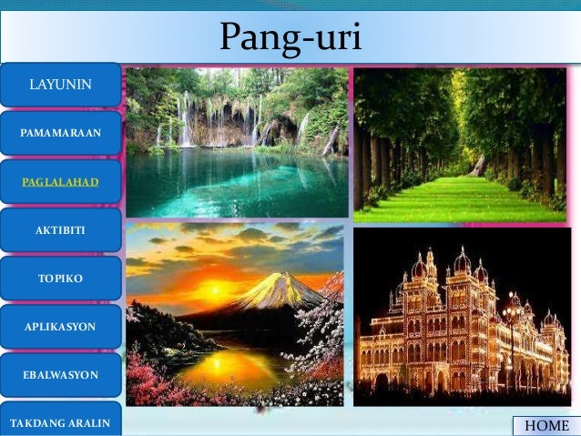 Pang Uri
