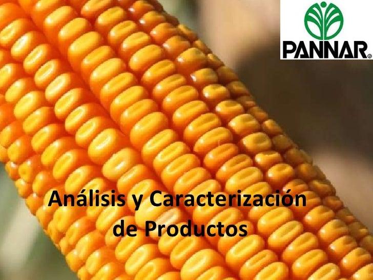Análisis y Caracterización  de Productos