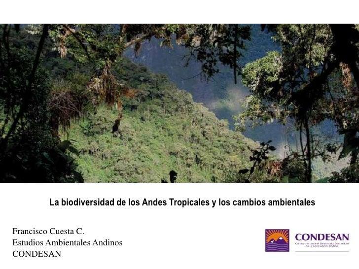 La biodiversidad de los Andes Tropicales y los cambios ambientales<br />Francisco Cuesta C.<br />Estudios Ambientales Andi...