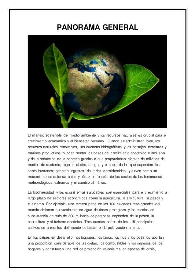 PANORAMA GENERAL El manejo sostenible del medio ambiente y los recursos naturales es crucial para el crecimiento económico...