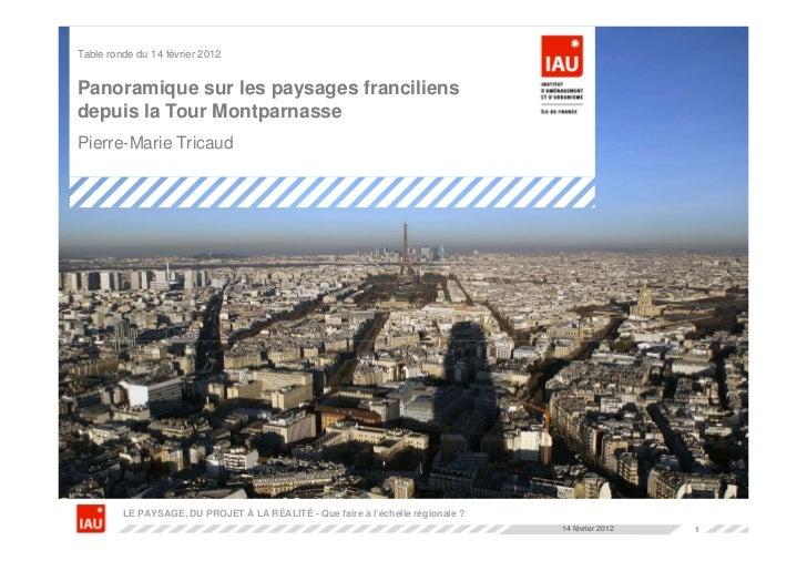 Table ronde du 14 février 2012Panoramique sur les paysages franciliensdepuis la Tour MontparnassePierre-Marie Tricaud     ...