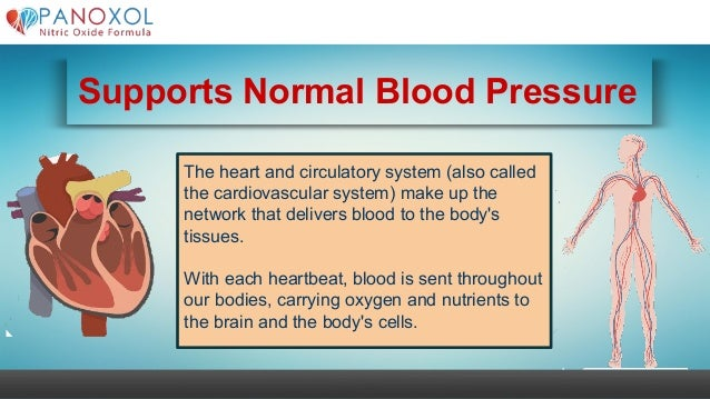 Supports Normal Blood Pressure The heart and circulatory system (also called the cardiovascular system) make up the networ...