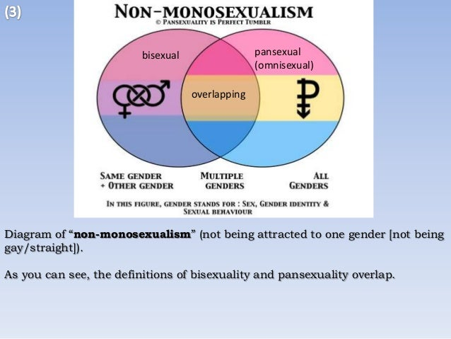 Pansexual meanings in english