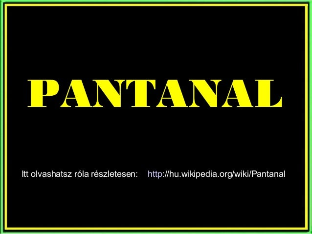 PANTANALItt olvashatsz róla részletesen:   http://hu.wikipedia.org/wiki/Pantanal