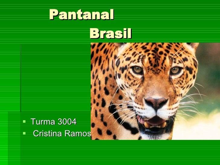 Pantanal    Brasil  <ul><li>Turma 3004  </li></ul><ul><li>Cristina Ramos  </li></ul>