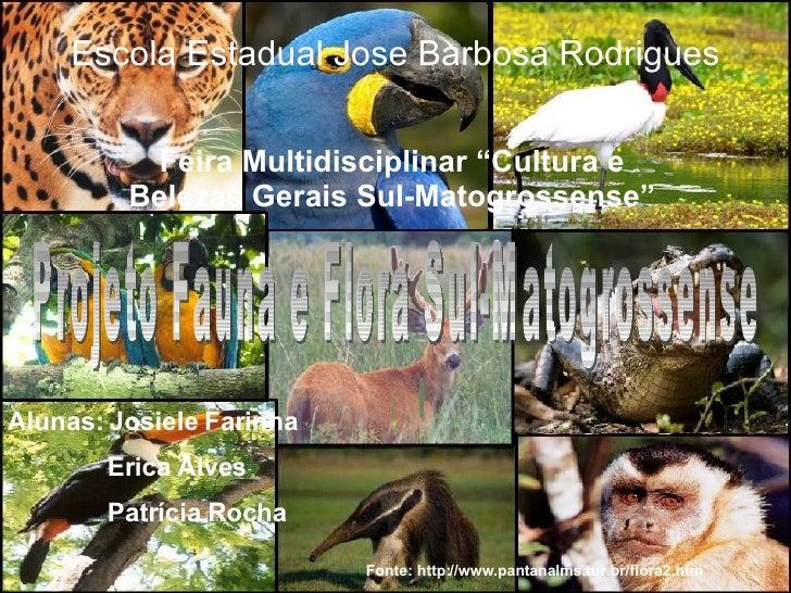 "Feira Multidisciplinar ""Cultura e Belezas Gerais Sul-Matogrossense"" Escola Estadual Jose Barbosa Rodrigues Alunas: Josiele..."