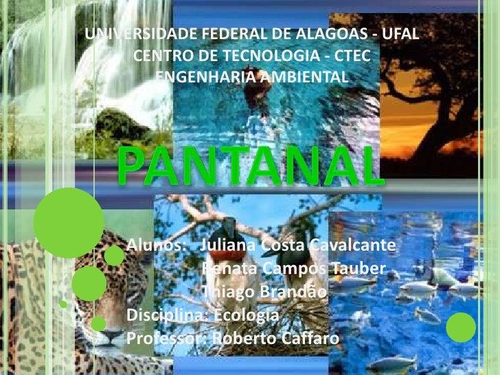 UNIVERSIDADE FEDERAL DE ALAGOAS - UFAL<br />CENTRO DE TECNOLOGIA - CTEC<br />ENGENHARIA AMBIENTAL<br />PANTANAL<br />Aluno...