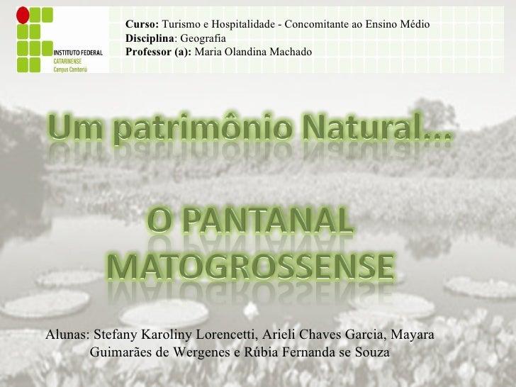Curso:  Turismo e Hospitalidade - Concomitante ao Ensino Médio Disciplina : Geografia Professor (a):  Maria Olandina Macha...