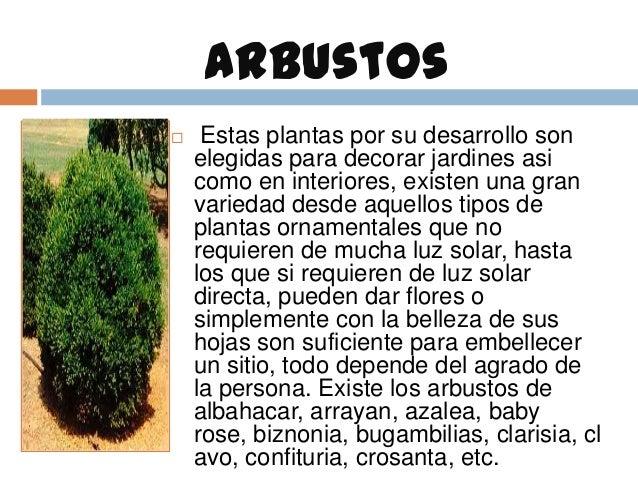 Diversidad bot nica para el hogar for Arbustos de jardin nombres