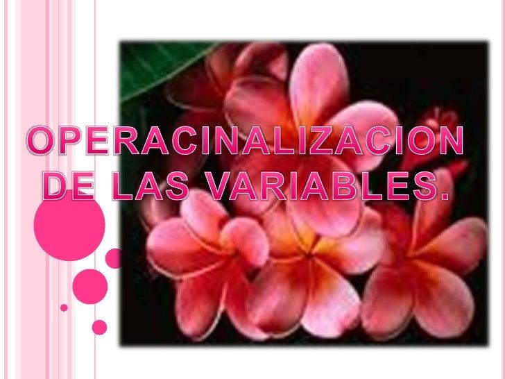 OPERACINALIZACION DE LAS VARIABLES.<br />