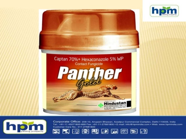 PANTHER GOLD [CAPTAN 70% + HEXACONAZOLE 5% WP]  PANTHER GOLD is a contact / non-systemic fungicide with protective and cu...
