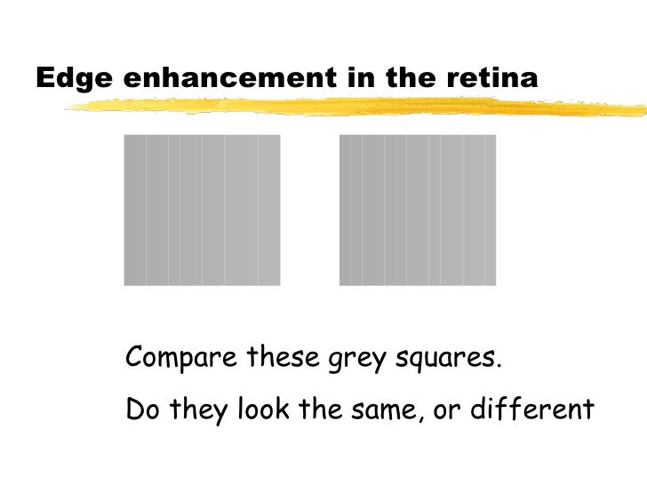 Edge enhancement in the retina Compare these grey squares. Do they look the same, or different