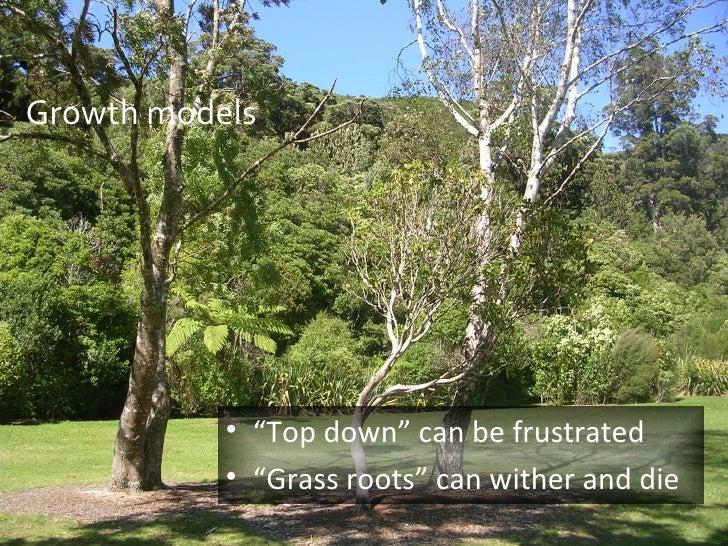 "Growth models <ul><li>"" Top down"" can be frustrated </li></ul><ul><li>"" Grass roots"" can wither and die </li></ul>"