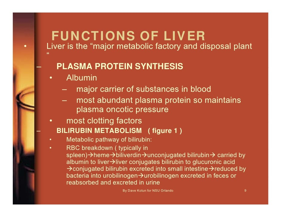 P A O 5600 Lecture 5 Liver Fx Tests 1hr Dave