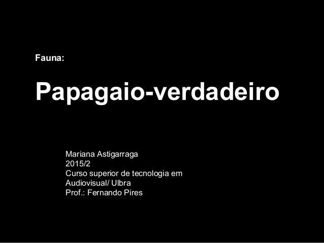 Fauna: Papagaio-verdadeiro Mariana Astigarraga 2015/2 Curso superior de tecnologia em Audiovisual/ Ulbra Prof.: Fernando P...