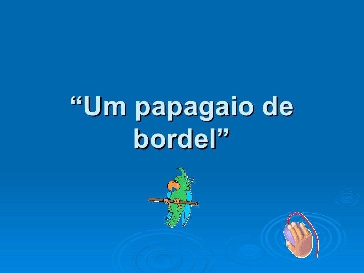 """ Um papagaio de bordel"""