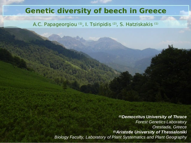 Genetic diversity of beech in Greece A.C. Papageorgiou   (1)                           , I. Tsiripidis   (2)              ...