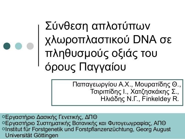 Σύνθεση απλοτύπων                χλωροπλαστικού DNA σε                πληθυσμούς οξιάς του                όρους Παγγαίου  ...