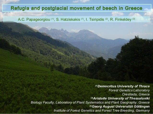 Refugia and postglacial movement of beech in Greece  A.C. Papageorgiou (1), S. Hatziskakis (1), I. Tsiripidis (2), R. Fink...