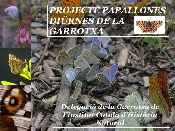 PROJECTE PAPALLONES DIÜRNES DE LA GARROTXA Delegació de la Garrotxa de l'Institut Català d'Història Natural