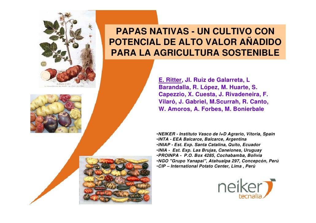 PAPAS NATIVAS - UN CULTIVO CON POTENCIAL DE ALTO VALOR AÑADIDO PARA LA AGRICULTURA SOSTENIBLE          E. Ritter, JI. Ruiz...