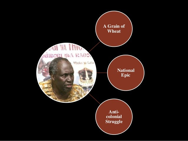 a grain of wheat essays Essays and criticism on ngugi wa thiong'o's a grain of wheat - critical  evaluation.