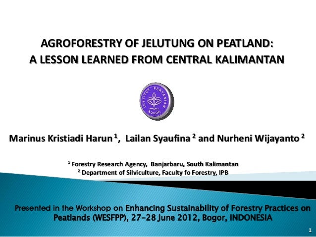 AGROFORESTRY OF JELUTUNG ON PEATLAND:    A LESSON LEARNED FROM CENTRAL KALIMANTANMarinus Kristiadi Harun 1, Lailan Syaufin...
