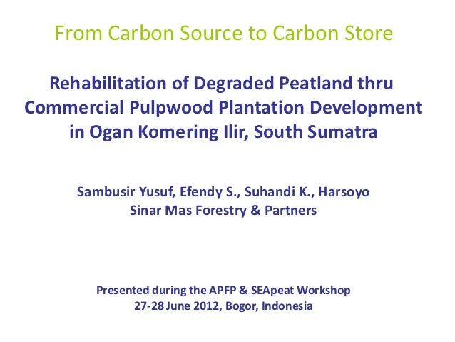 From Carbon Source to Carbon Store  Rehabilitation of Degraded Peatland thruCommercial Pulpwood Plantation Development    ...