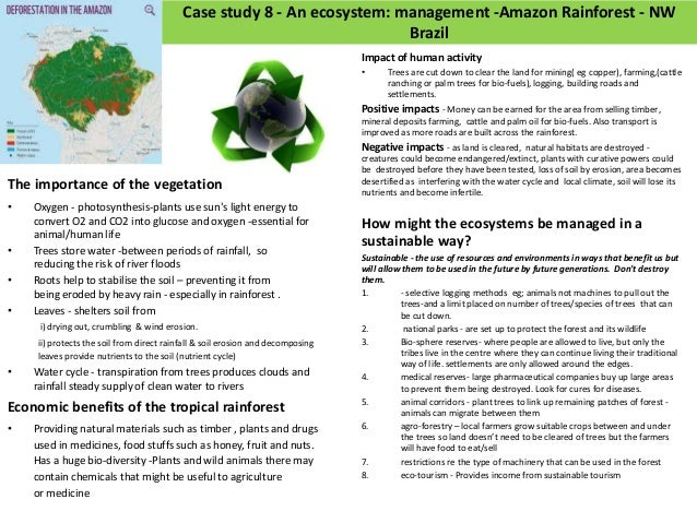 amazon case study 3 Wjec b and yr11 revision  services 3 case study 2: access to services: retail - meadowhall  case study 8: amazon rainforest.
