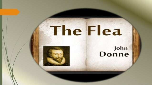 metaphysical poetry the flea A short analysis of john donne's 'the flea  as with many poems by john donne and the metaphysical poets,  metaphysical poets, poetry, summary, the flea.