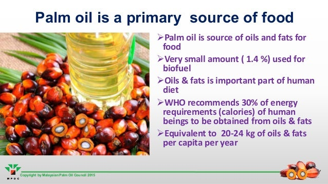 oil palm physiology essay Unsustainable palm oil development fuels widespread rainforest destruction, human rights abuses, illegal wildlife smuggling, climate change and the destruction of delicate ecosystems across south-east asia.