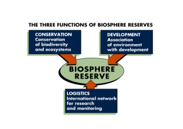 essay on biosphere reserve Biosphere reserves of india the idea of the biosphere reserve was  initiated by unesco in 1974 under the man and biosphere programme (mab.