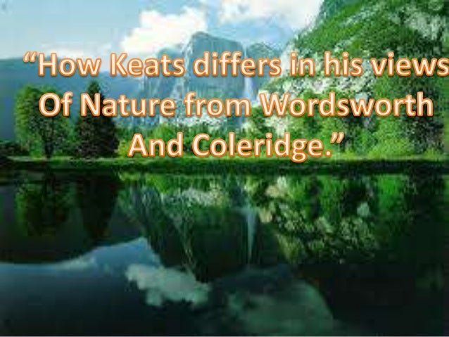 william wordsworth as a poet of nature essays The nature & function of the transcendent in william wordsworth's poem, 'tintern abbey' [ send me this essay ] a 5 page paper which examines the nature and function of the transcendent in william wordsworth's 1798 poem, 'lines composed a few miles above tintern abbey.