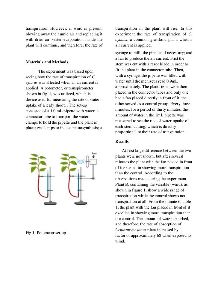 transpiration lab essay Ap bio lab report: transpiration elioth gomez march292012 pd documents similar to ap lab 9 transpiration skip carousel carousel previous carousel next ap bio essay 4 midterm review 2013 emerson,ralph waldo (2)hj ap bio essay #29.
