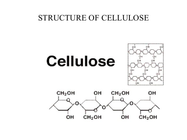 Cellulose properties • It is abundant and replenishable • It can be easily harvested and transported to its usage site • G...