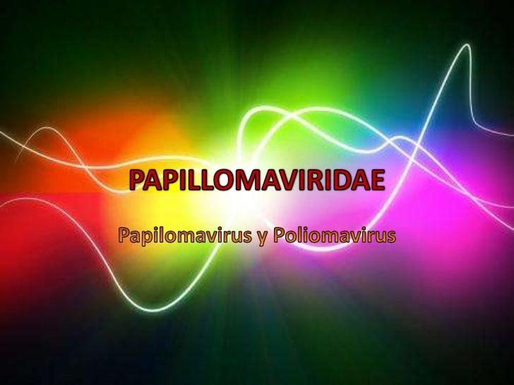 • Esta antigua familia se dividió en dos• Papillomavirus y poliomavirus• Son capaces de producir infecciones líticas, crón...