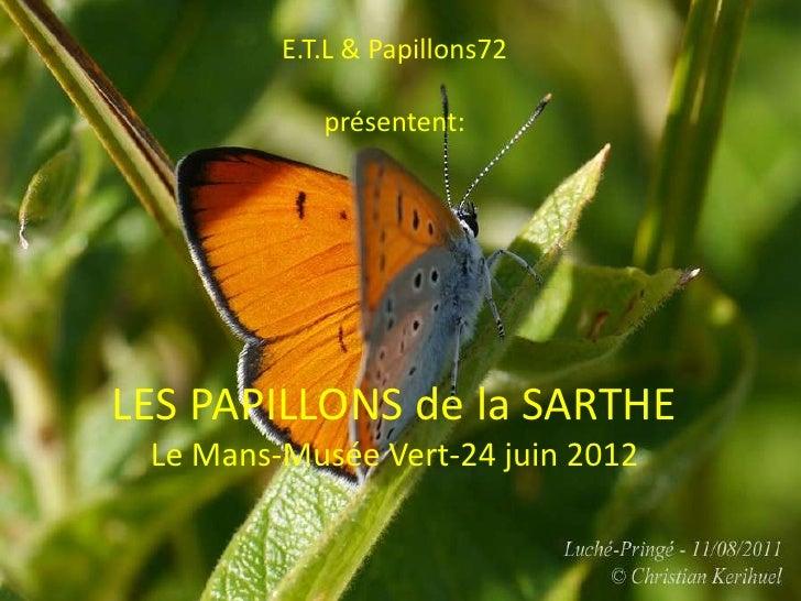 E.T.L & Papillons72            présentent:LES PAPILLONS de la SARTHE Le Mans-Musée Vert-24 juin 2012