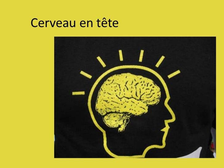Cerveau en tête