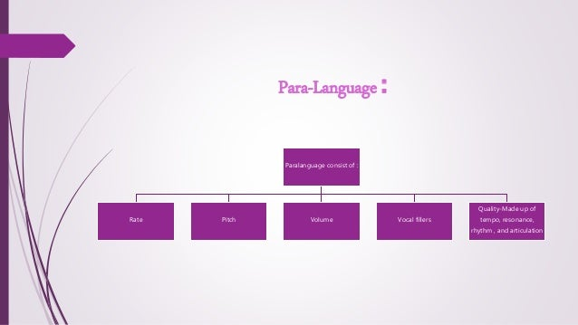 what is the definition of paralanguage